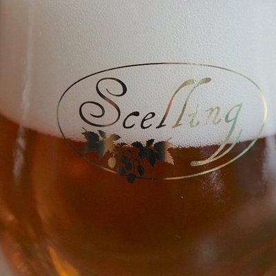Scelling - Terschellinger Bieren