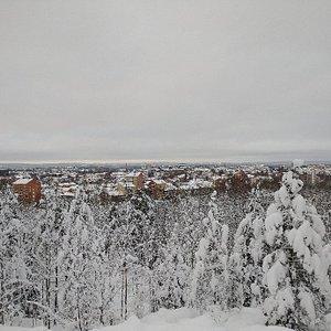 Hamrinsberget