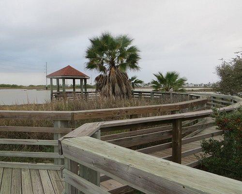 Wetlands Park, Port Aransas, TX , 12/2020