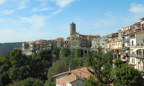 Piazza Umberto I e il borgo di Nemi visti dal roseto.