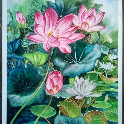 Water Colour on Paper.