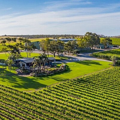 A stunning north-west aerial view of the Mollydooker grounds, with our cellar door in the foreground & winery in the background, surrounded by lush shiraz vines.