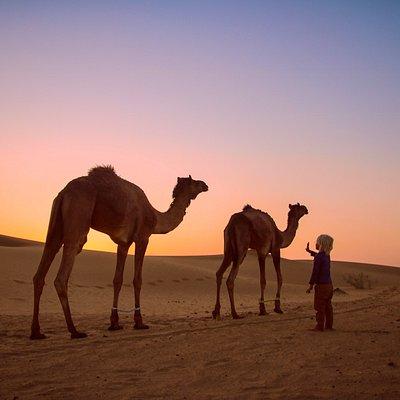 Sunset on the camel safari with Wanderlust.