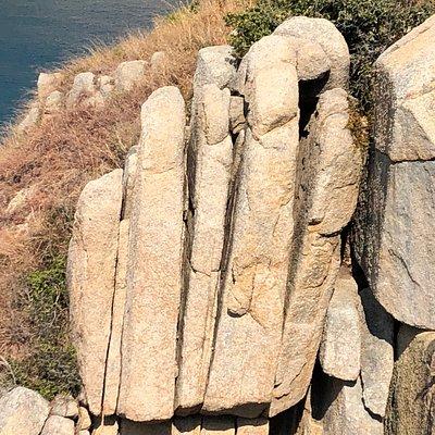 Palm Cliff on Po Toi