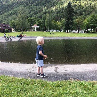 Tveitoparken med tjern til å bade i, lekeapprater og stort grøntareal til piknikk o.l.
