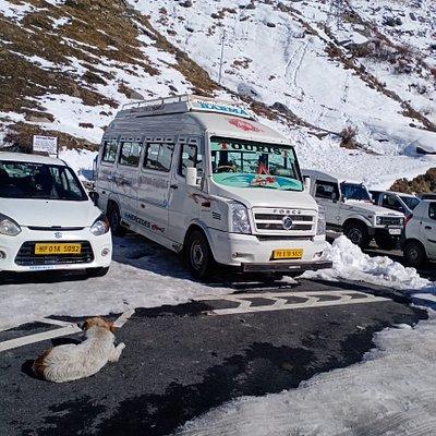 Tempo Traveller in Zirakpur
