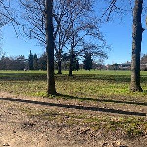 Parco dei Cedri
