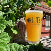 A pint out on our patio, next to some growing hops.