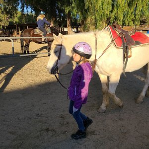 My daughter's first riding lesson.