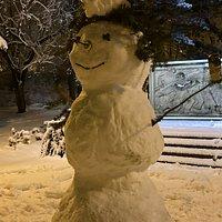 Sněhulák