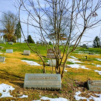 great walk in a historical cemetery