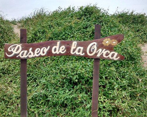 Paseo De La Orca: Av. Costanera, Localidad de Mar de Ajò, Pcia. Bs.As.-Argentina 2020.