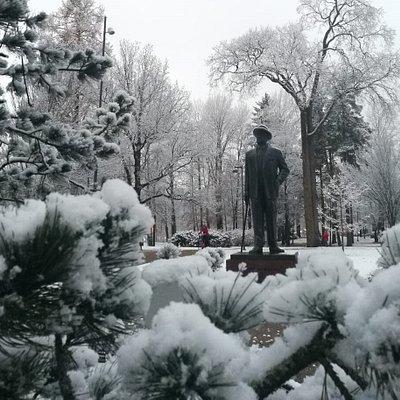 Kauniina talvipäivänä napattu kuva mestarista.