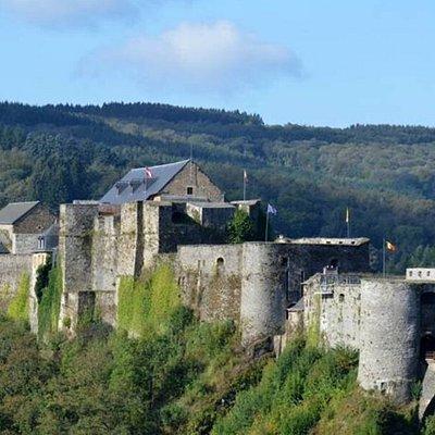 Vue panoramique du château fort (© D. SAMYN)