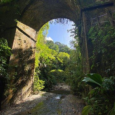 Cascade Absalon