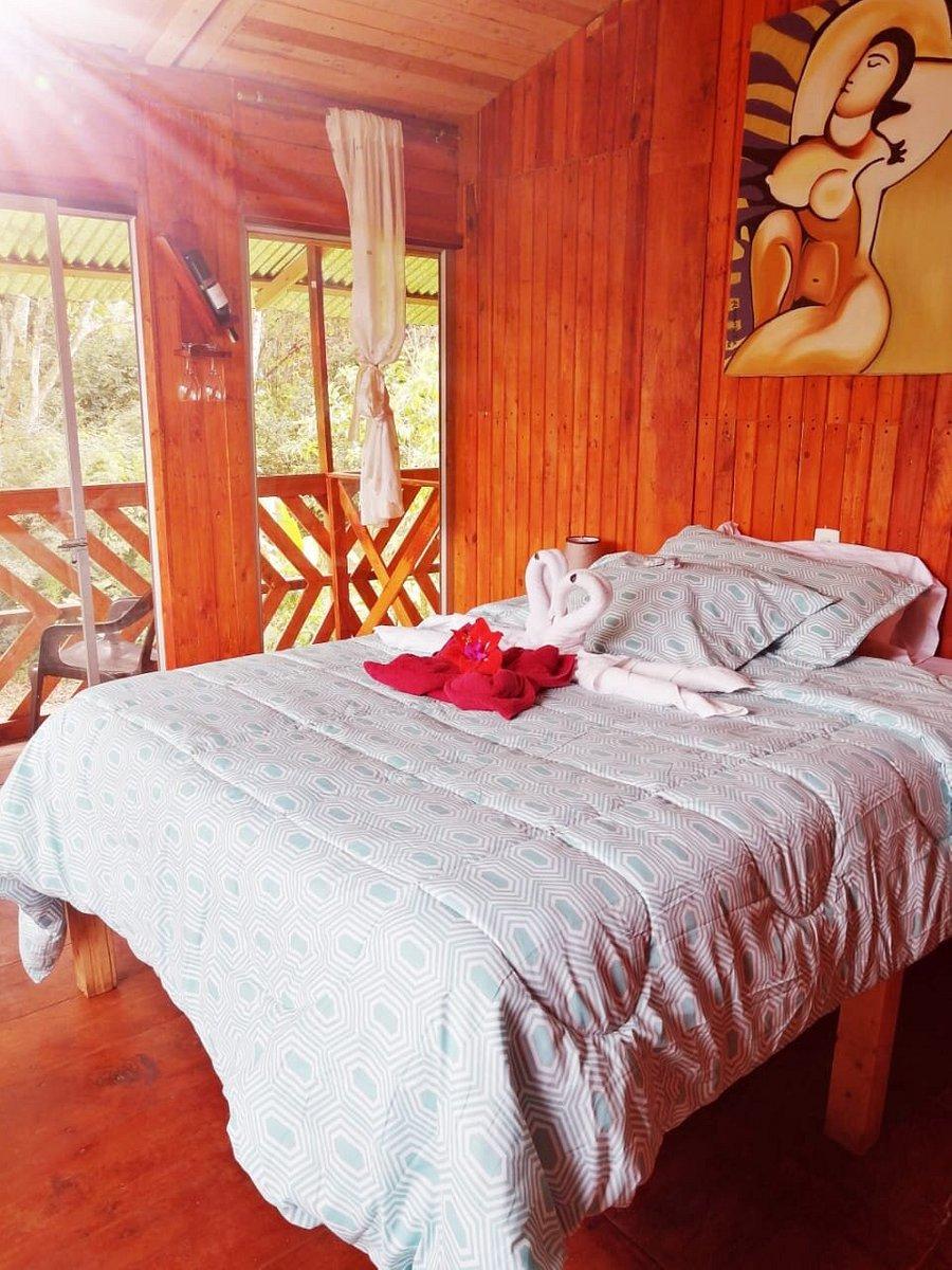 HOSTERIA MINDO RIVER - Hotel Reviews (Ecuador) - Tripadvisor