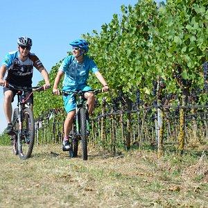 Kaiserstühler Sonne, Wein und Bikespaß