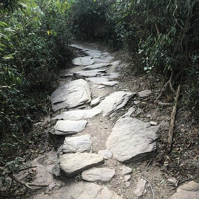 Double Haven Country Trail - ancient trail