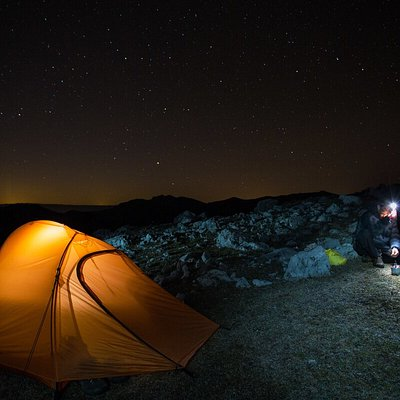 Track wild bison, spend the night in comfortable safari-style tents or under the stars and enjoy local cuisine