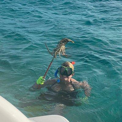 Spear fishing lobster