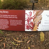 Herbarium Discovery Walk