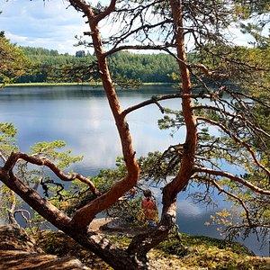 Norppapolulla mieli lepää! Upea 13 km reitti kiemurtelee rantakallioilla ja mäntykankailla ja sen voi kiertää myös kolmen tai neljän kilometrin pätkissä. Reitin kruunaa Kaivannossa sijaitseva upea käsinveistetty, esteetön Norppa-laavu.