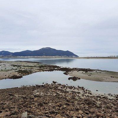 Parque Natural Marismas de Santoña