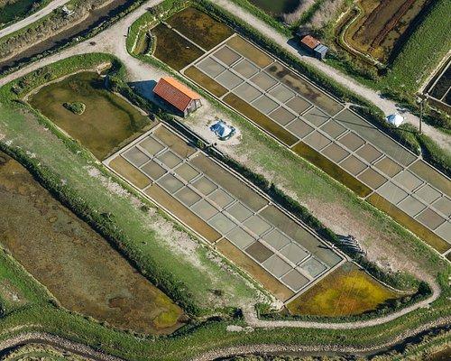 Crédit photo : www.juliengazeau.com