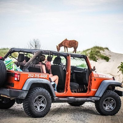 You can be your own tour guide in our beach-ready Jeeps