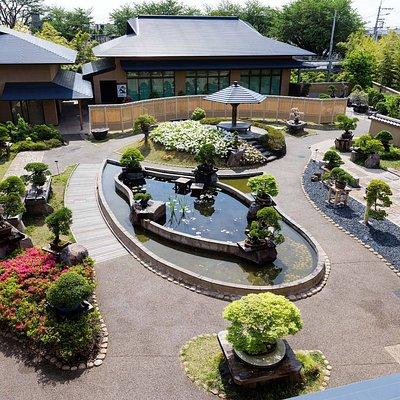 さいたま市大宮盆栽美術館, Omiya Bonsai Art museum,Saitama,