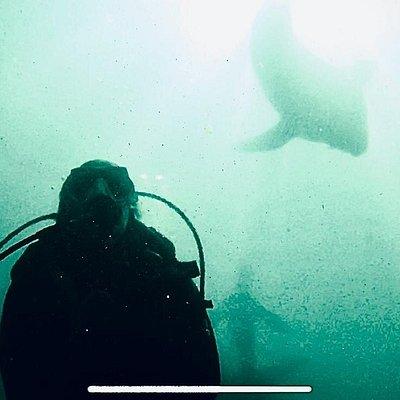 Isla de Lobos y paseos