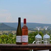 Jéghideg borokkal és a Hegyesdi várromra néző panorámával várjuk a borteraszunkra érkező vendégeinket!