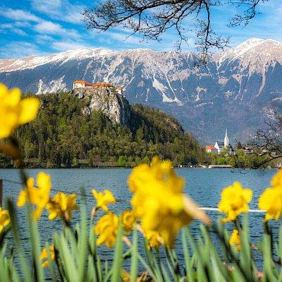 Lake Bled in spring.  Photo: Jošt Gantar, www.bled.si