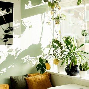 Nordic Light Fotohus Cafe og bar