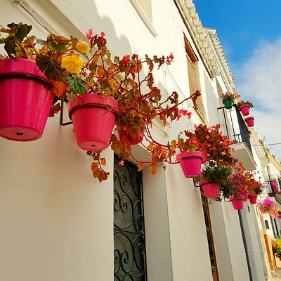 Estepona Town is full of flowers all year round