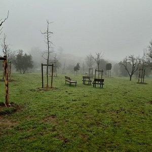 una piccola panoramica del parco visto dall'ingresso