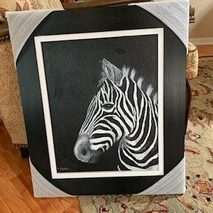 Monochromatic Zebra with beautiful Frame.