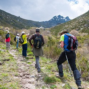 Hiking in Estrela Mountain