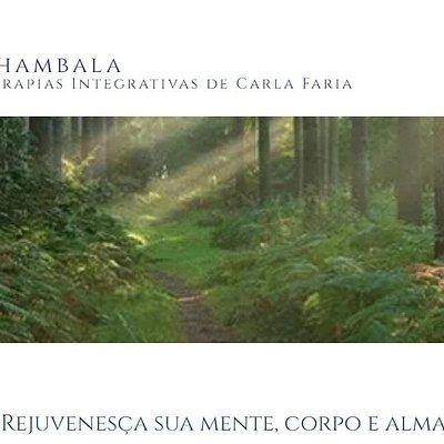 Shambala - Centro de Terapias  Localizado no Centro do Porto , bem na movida.  Funcionamento por marcação.