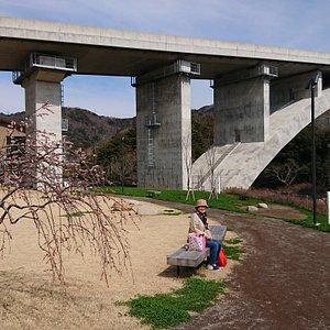 縦貫道の下のベンチ、川を観ながらランチもいいと思います。 枝垂れ桜の花は散っていました。。。
