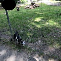 Tiergehege im Sahnpark mino zoo Crimmitschau