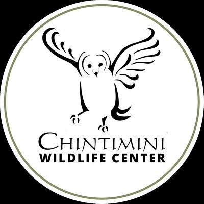 Chintimini Wildlife Center's Logo