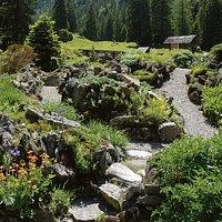 Jardin botanique alpin Pont-de-Nant La Thomasia à Les Plans-sur-Bex (Vaud)