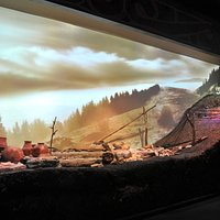 The National Museum of Eastern Carpathians -Prehistoric exhibition