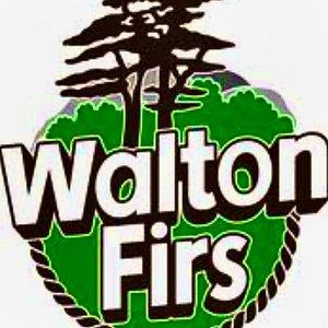 Walton Firs Activity Centre's logo.