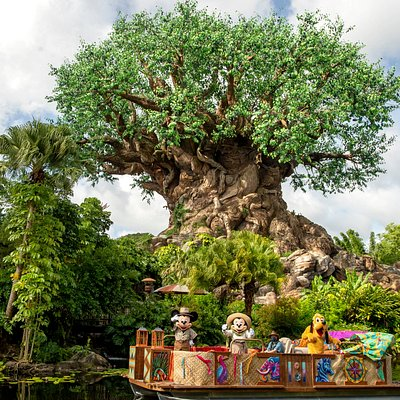 Mickey, Minnie & Pluto sailing in front of the Tree of Life at Disney's Animal Kingdom