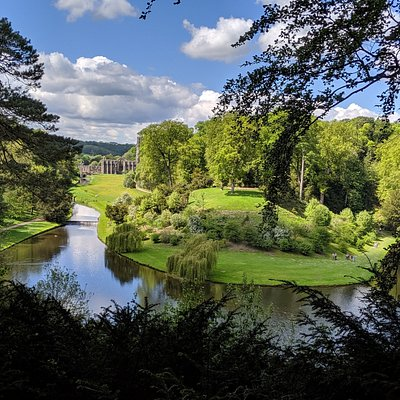 Visit' surprise view' to enjoy one of the best vistas of the water garden and striking abbey ruin