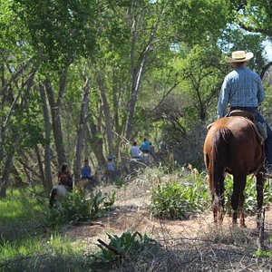 One of our amazing trail rides at Dead Horse Ranch State Park