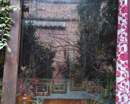 Ventana del salón con reflejos del jardín