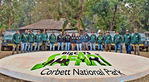 Team Corbett Big Cats Safari At Corbett National Park